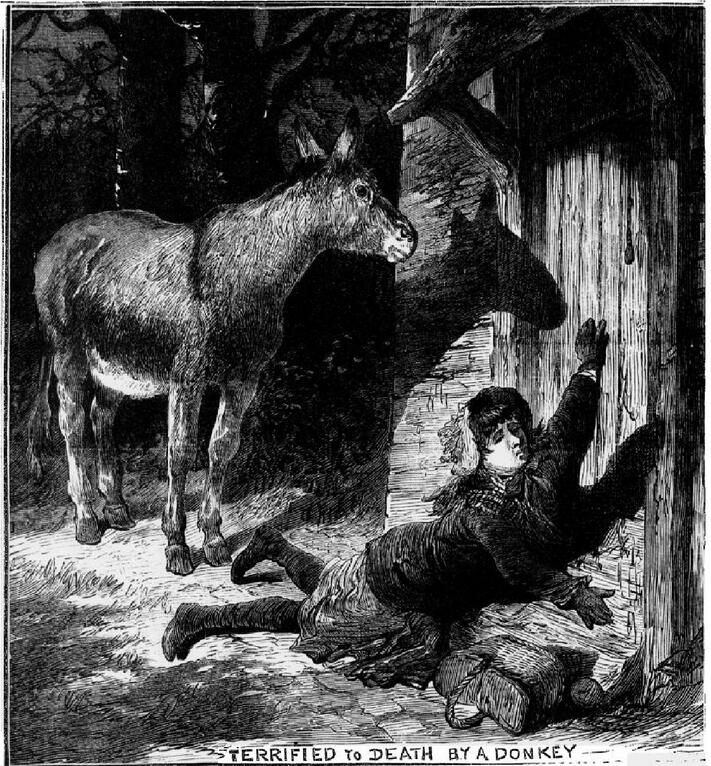 Terrified To Death By A Donkey: Just one example of the unusual stories that Bob Nicholson has found in historic newspapers. This appeared in the Illustrated Police News, 1883.